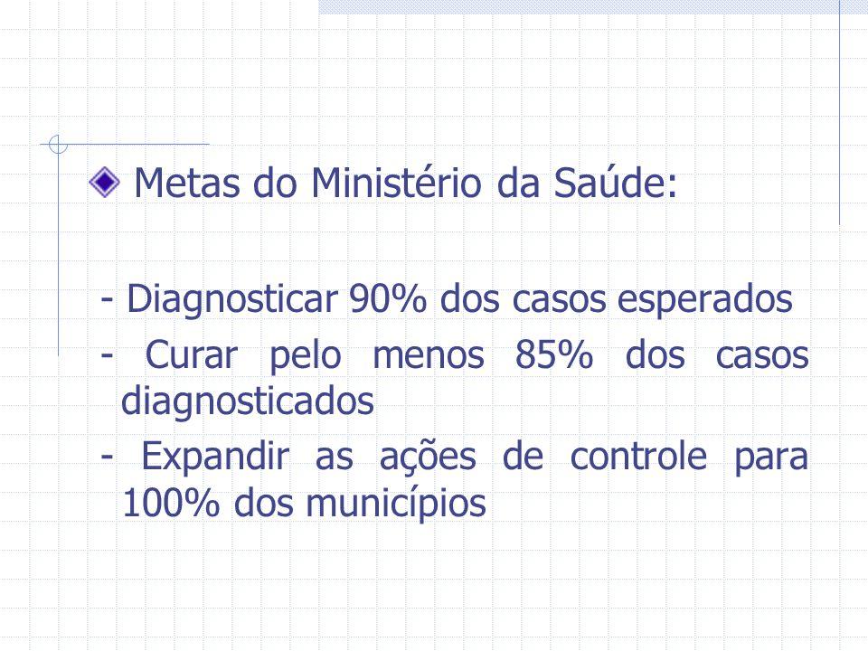 Metas do Ministério da Saúde: - Diagnosticar 90% dos casos esperados - Curar pelo menos 85% dos casos diagnosticados - Expandir as ações de controle p