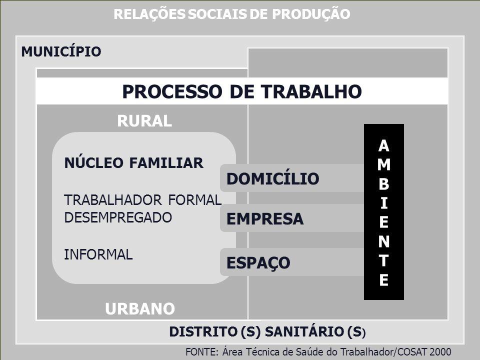 RELAÇÕES SOCIAIS DE PRODUÇÃO MUNICÍPIO DISTRITO (S) SANITÁRIO (S ) NÚCLEO FAMILIAR TRABALHADOR FORMAL DESEMPREGADO INFORMAL RURAL URBANO PROCESSO DE T