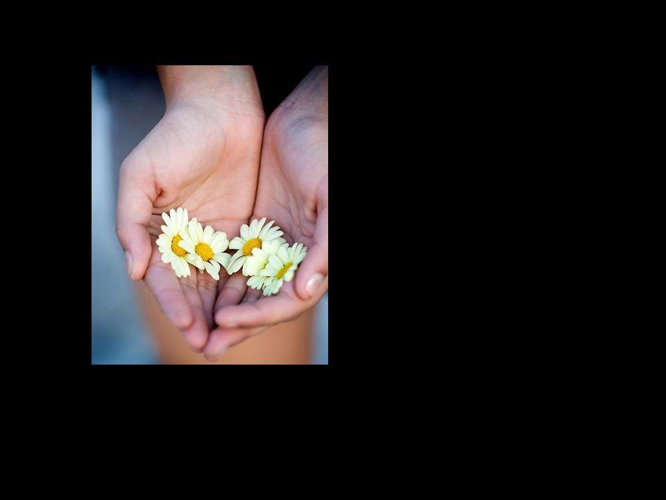 Por meio de atos de caridade e compaixão permitir que a Fonte nos renove constantemente. A Fonte sempre viva da Vida.