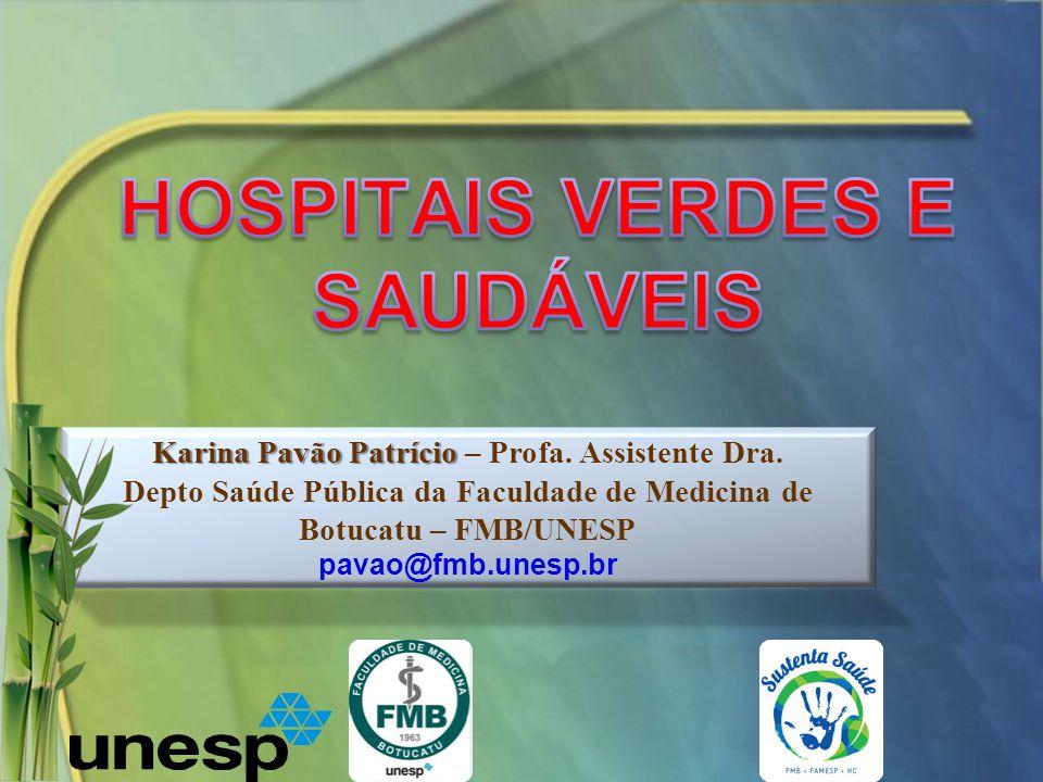 Karina Pavão Patrício Karina Pavão Patrício – Profa. Assistente Dra. Depto Saúde Pública da Faculdade de Medicina de Botucatu – FMB/UNESP pavao@fmb.un