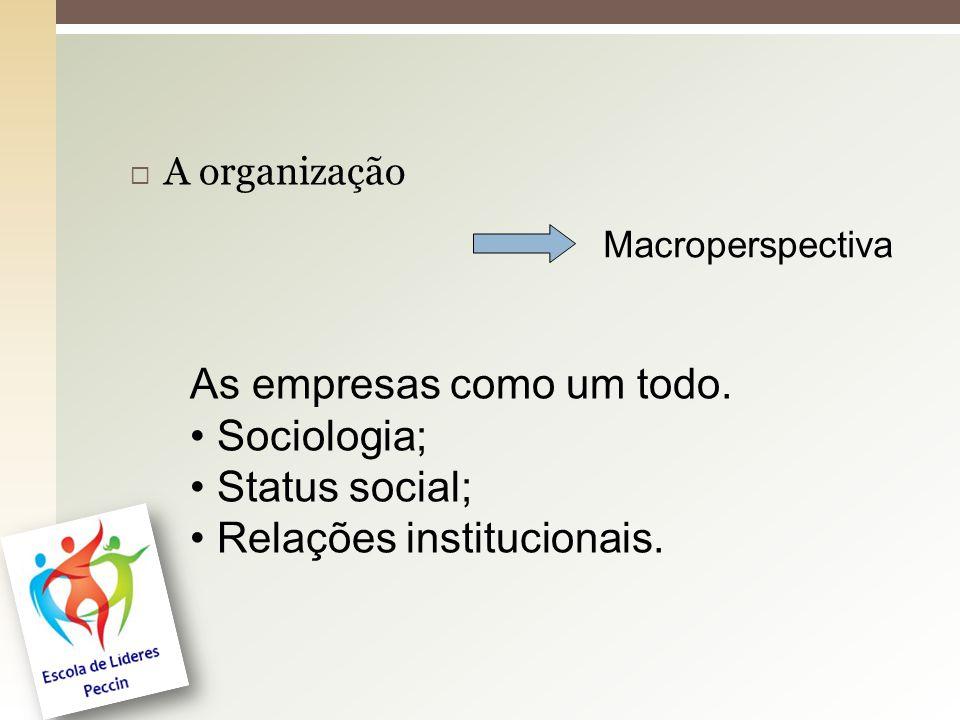  A organização Macroperspectiva As empresas como um todo. Sociologia; Status social; Relações institucionais.