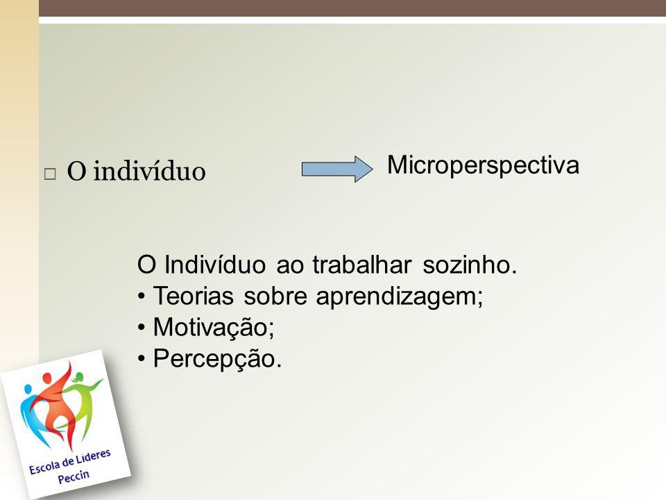  O indivíduo Microperspectiva O Indivíduo ao trabalhar sozinho. Teorias sobre aprendizagem; Motivação; Percepção.