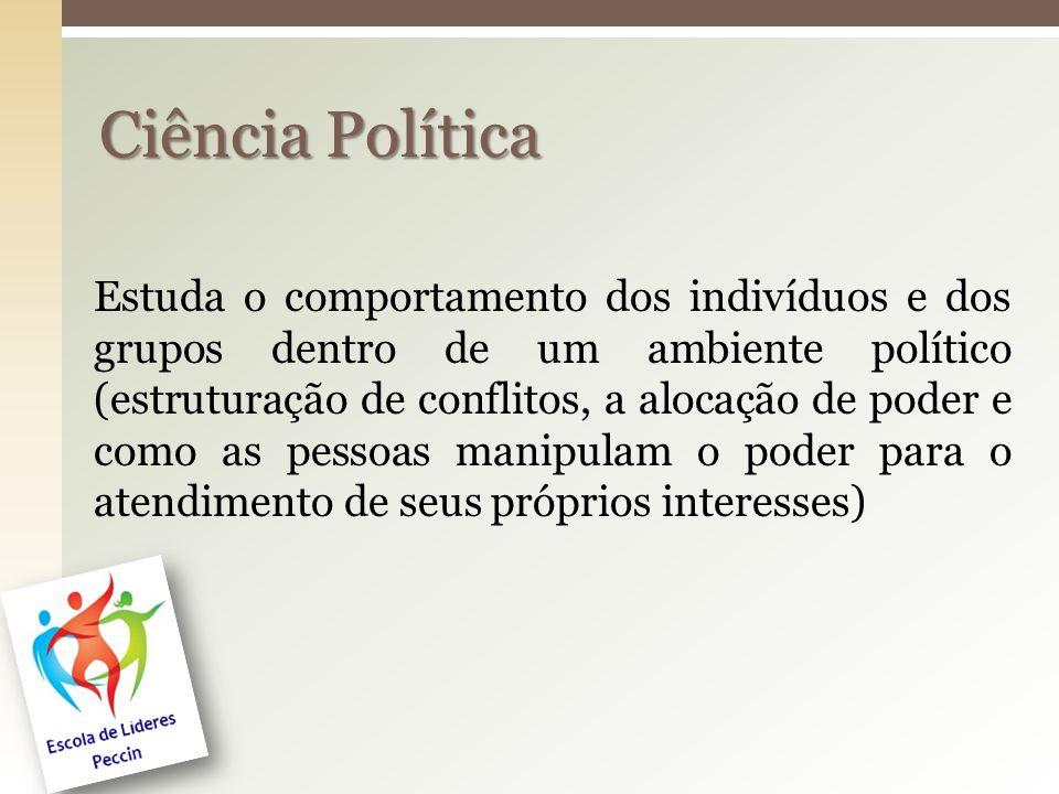 Estuda o comportamento dos indivíduos e dos grupos dentro de um ambiente político (estruturação de conflitos, a alocação de poder e como as pessoas ma