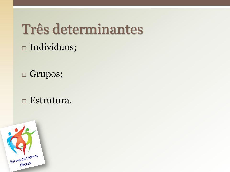  Indivíduos;  Grupos;  Estrutura. Três determinantes