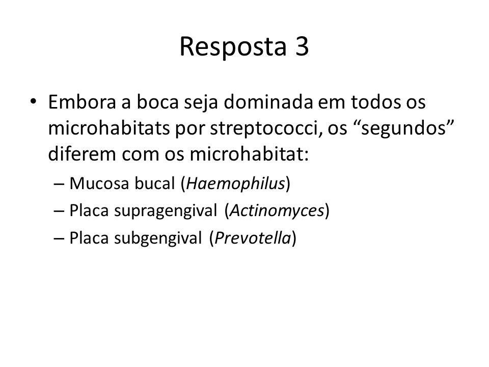 Resposta 3 Embora a boca seja dominada em todos os microhabitats por streptococci, os segundos diferem com os microhabitat: – Mucosa bucal (Haemophilus) – Placa supragengival (Actinomyces) – Placa subgengival (Prevotella)