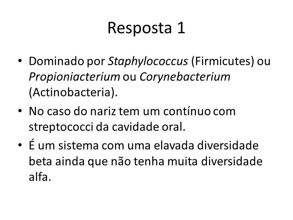 Resposta 1 Dominado por Staphylococcus (Firmicutes) ou Propioniacterium ou Corynebacterium (Actinobacteria).