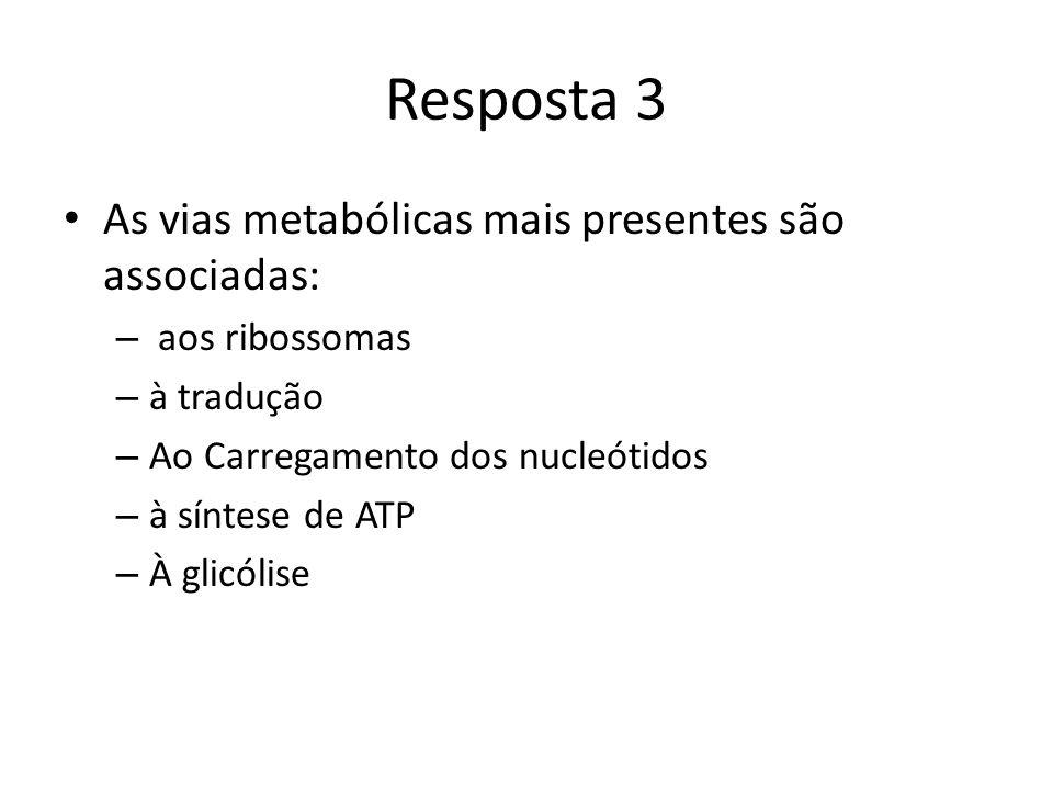 Resposta 3 As vias metabólicas mais presentes são associadas: – aos ribossomas – à tradução – Ao Carregamento dos nucleótidos – à síntese de ATP – À glicólise