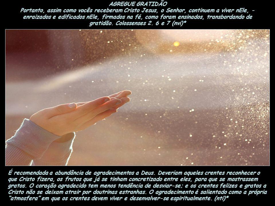AGREGUE FIDELIDADE Disse o Senhor: Quem é, pois, o mordomo fiel e prudente, a quem o senhor confiará os seus conservos para dar-lhes o sustento a seu