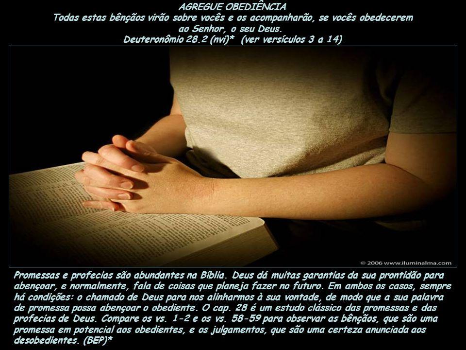 AGREGUE OBEDIÊNCIA Todas estas bênçãos virão sobre vocês e os acompanharão, se vocês obedecerem ao Senhor, o seu Deus.