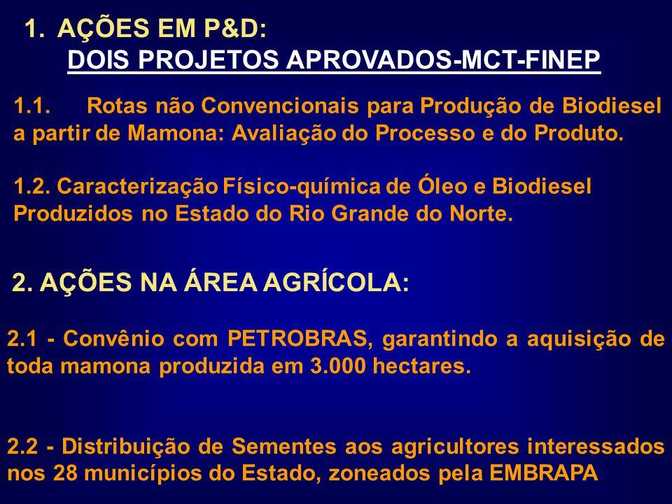 1.AÇÕES EM P&D: DOIS PROJETOS APROVADOS-MCT-FINEP 1.1.