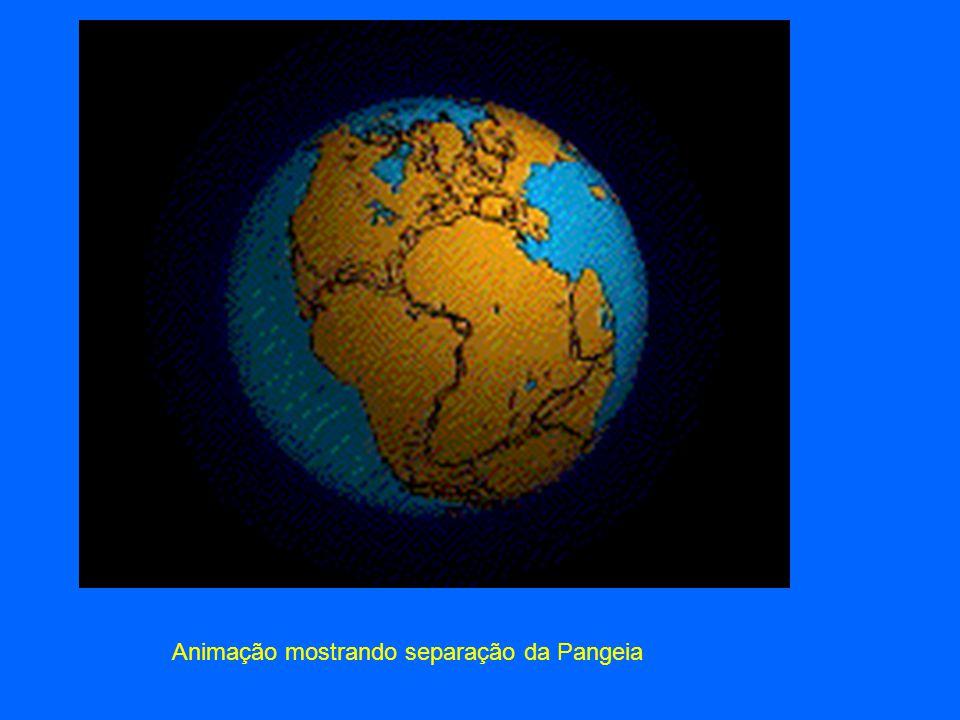 Separação dos continentes 200 Milhões de anos A Pangeia separou-se e deu origem a dois mega continentes a Laurásia (América do Norte+Europa+Ásia) e Gondwana (América do Sul, África, Antárctica, Austrália e Índia).