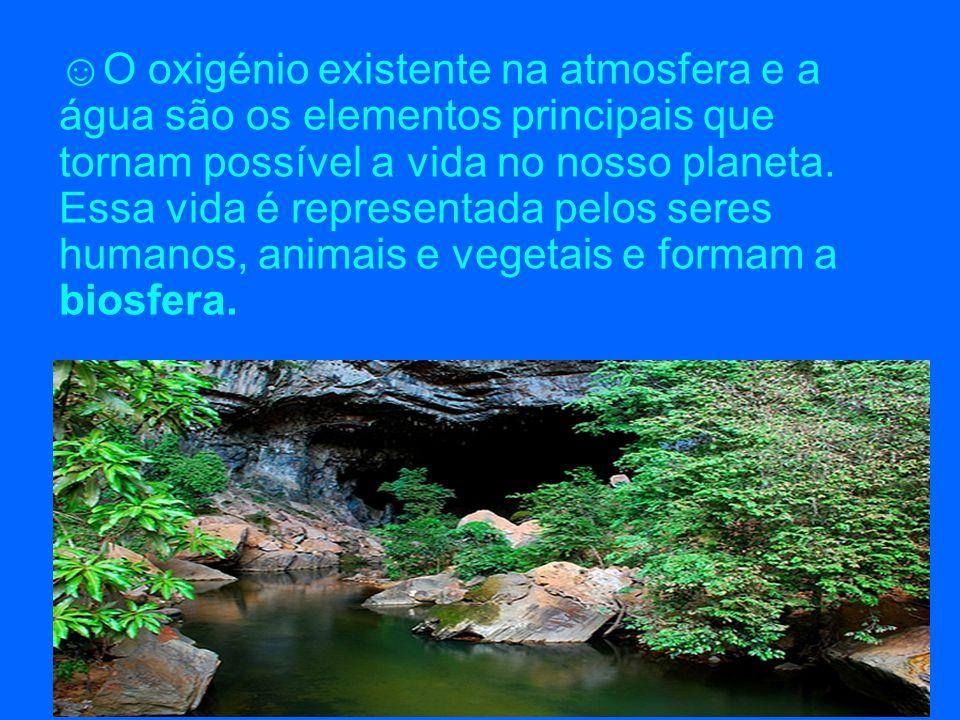 ☺O oxigénio existente na atmosfera e a água são os elementos principais que tornam possível a vida no nosso planeta. Essa vida é representada pelos se