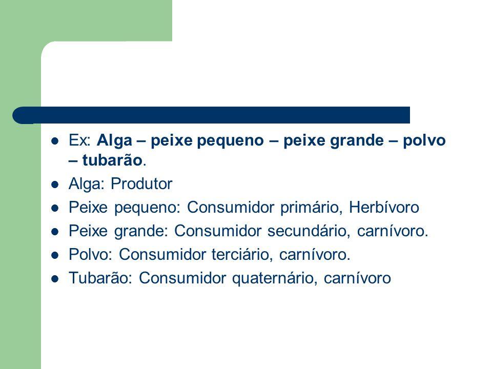 Ex: Alga – peixe pequeno – peixe grande – polvo – tubarão. Alga: Produtor Peixe pequeno: Consumidor primário, Herbívoro Peixe grande: Consumidor secun