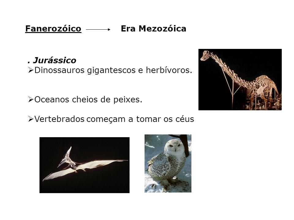 Era MezozóicaFanerozóico. Jurássico  Dinossauros gigantescos e herbívoros.  Oceanos cheios de peixes.  Vertebrados começam a tomar os céus