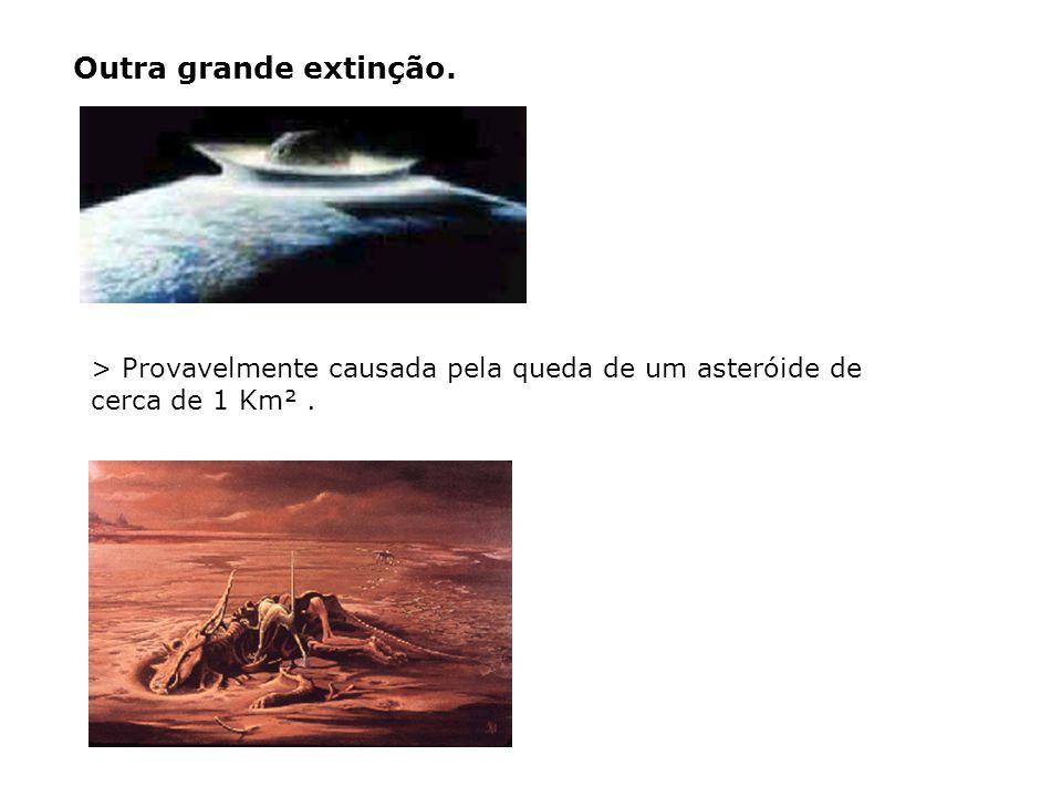 > Provavelmente causada pela queda de um asteróide de cerca de 1 Km². Outra grande extinção.