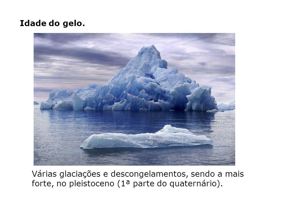 Idade do gelo. Várias glaciações e descongelamentos, sendo a mais forte, no pleistoceno (1ª parte do quaternário).