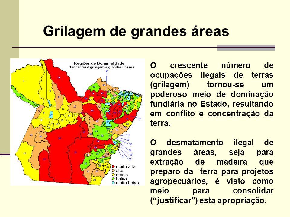 O crescente número de ocupações ilegais de terras (grilagem) tornou-se um poderoso meio de dominação fundiária no Estado, resultando em conflito e con