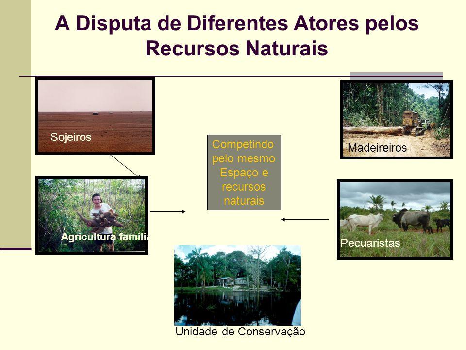 A Disputa de Diferentes Atores pelos Recursos Naturais Madeireiros Competindo pelo mesmo Espaço e recursos naturais Sojeiros Agricultura familiar Pecu