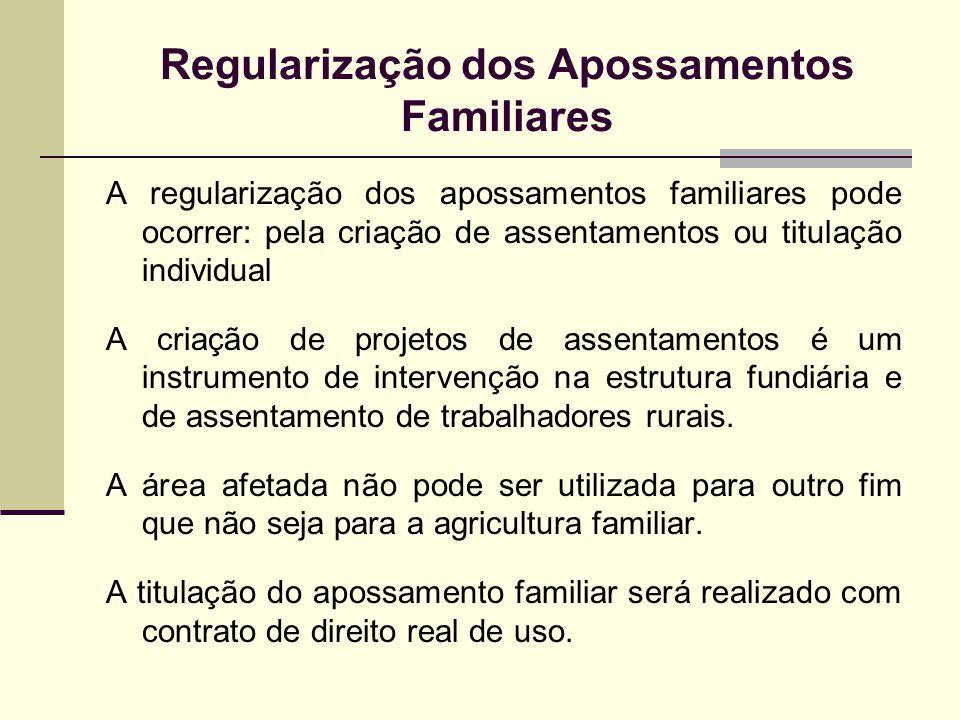 Regularização dos Apossamentos Familiares A regularização dos apossamentos familiares pode ocorrer: pela criação de assentamentos ou titulação individ