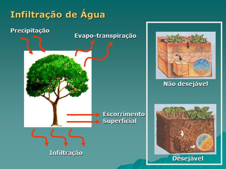 Infiltração de Água Precipitação Infiltração Escorrimento Superficial Evapo-transpiração Não desejável Desejável