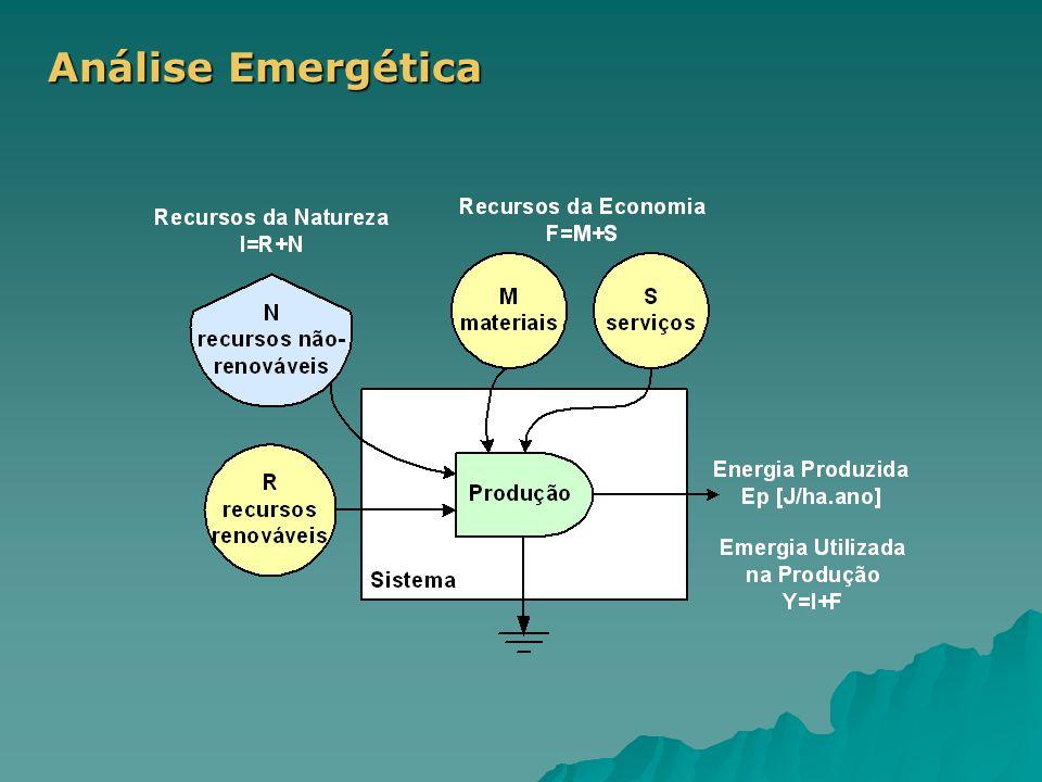 Análise Emergética