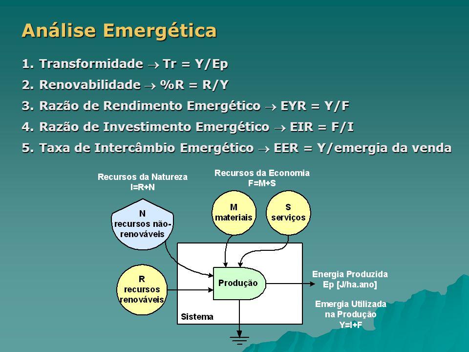 1.Transformidade  Tr = Y/Ep 2.Renovabilidade  %R = R/Y 3.Razão de Rendimento Emergético  EYR = Y/F 4.Razão de Investimento Emergético  EIR = F/I 5