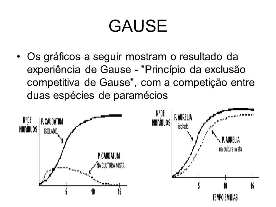 GAUSE Os gráficos a seguir mostram o resultado da experiência de Gause -