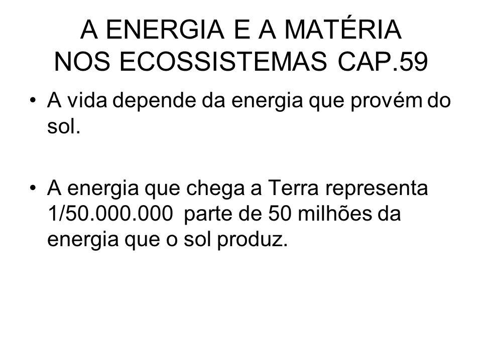 A ENERGIA E A MATÉRIA NOS ECOSSISTEMAS CAP.59 A vida depende da energia que provém do sol. A energia que chega a Terra representa 1/50.000.000 parte d