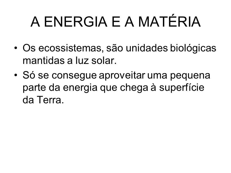 A ENERGIA E A MATÉRIA Os ecossistemas, são unidades biológicas mantidas a luz solar. Só se consegue aproveitar uma pequena parte da energia que chega