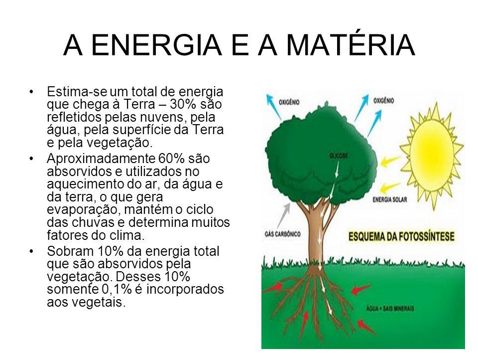 A ENERGIA E A MATÉRIA Estima-se um total de energia que chega à Terra – 30% são refletidos pelas nuvens, pela água, pela superfície da Terra e pela ve