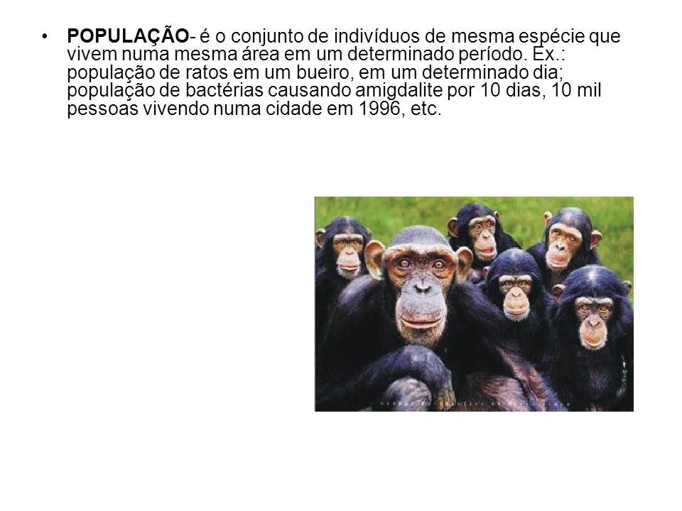 POPULAÇÃO- é o conjunto de indivíduos de mesma espécie que vivem numa mesma área em um determinado período. Ex.: população de ratos em um bueiro, em u