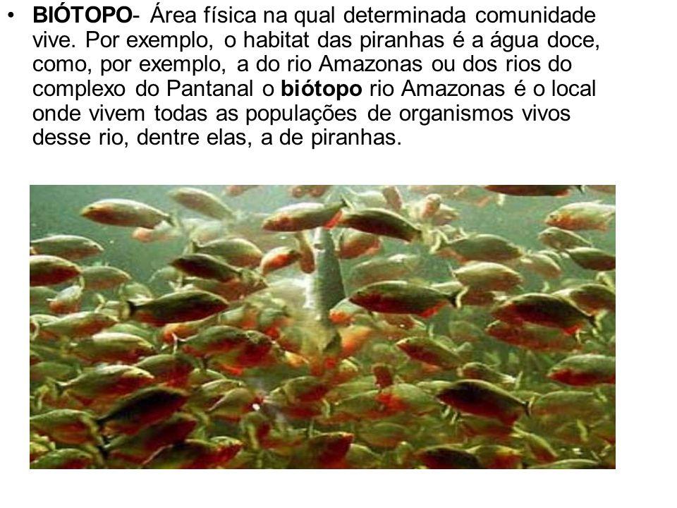 BIÓTOPO- Área física na qual determinada comunidade vive. Por exemplo, o habitat das piranhas é a água doce, como, por exemplo, a do rio Amazonas ou d