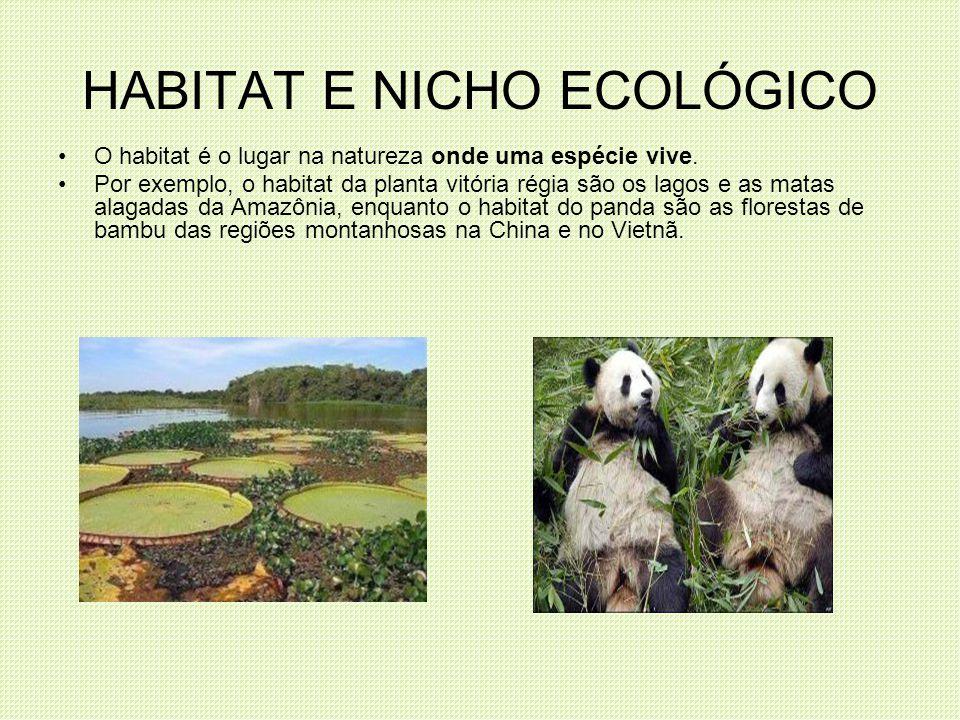HABITAT E NICHO ECOLÓGICO O habitat é o lugar na natureza onde uma espécie vive. Por exemplo, o habitat da planta vitória régia são os lagos e as mata