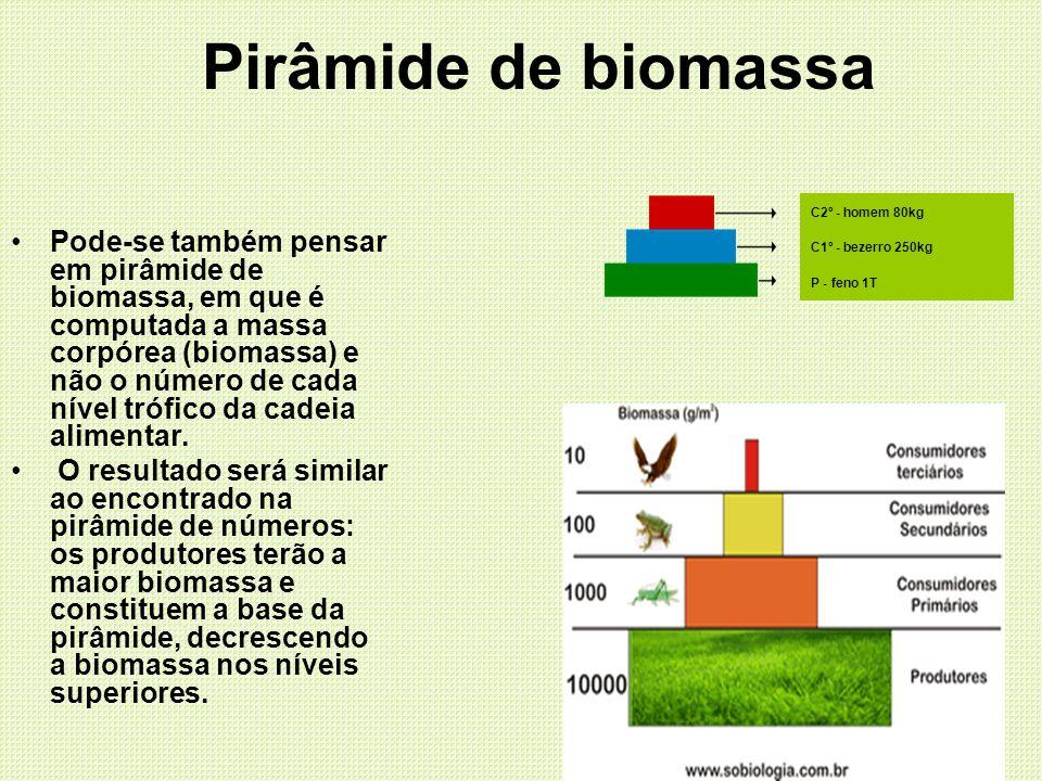 Pirâmide de biomassa Pode-se também pensar em pirâmide de biomassa, em que é computada a massa corpórea (biomassa) e não o número de cada nível trófic