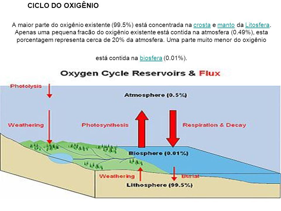 A maior parte do oxigênio existente (99.5%) está concentrada na crosta e manto da Litosfera. Apenas uma pequena fracão do oxigênio existente está cont
