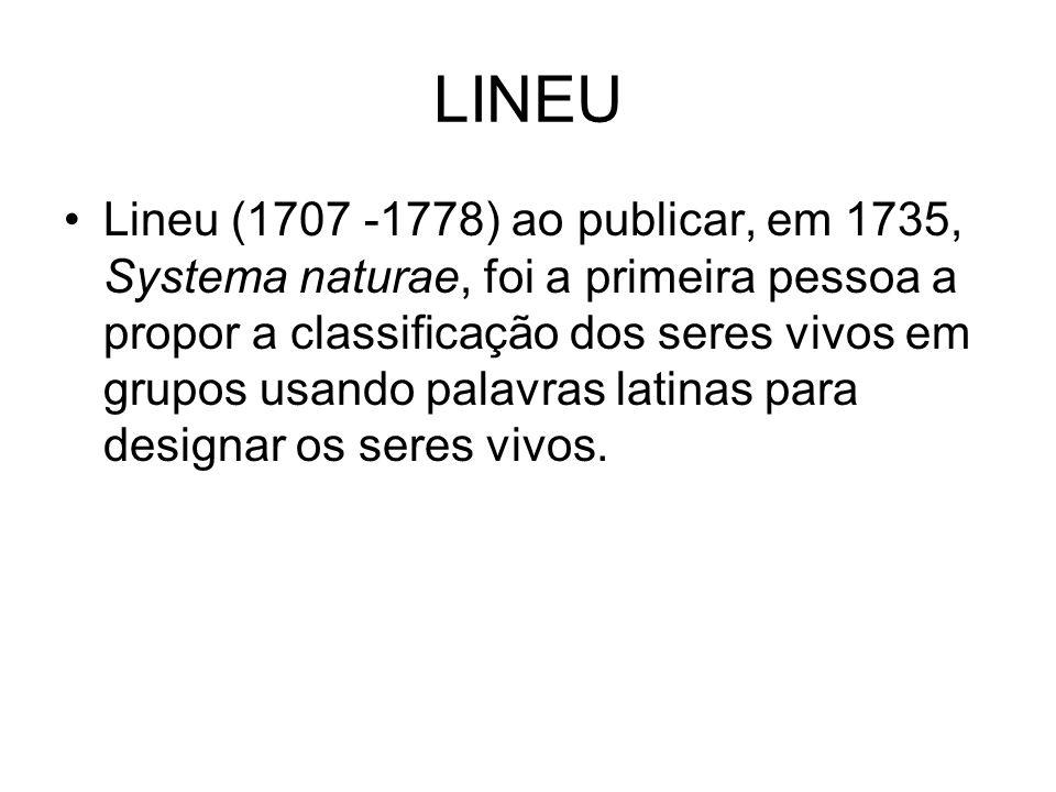 LINEU Lineu (1707 -1778) ao publicar, em 1735, Systema naturae, foi a primeira pessoa a propor a classificação dos seres vivos em grupos usando palavr
