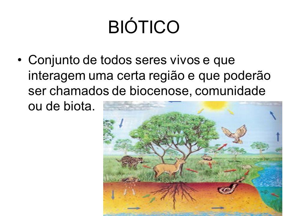 ECÓTONO- é a região de transição entre duas comunidades ou entre dois ecossistemas.