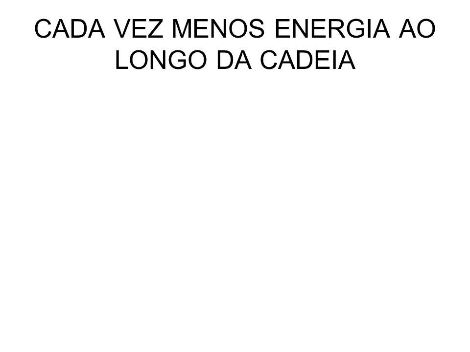 CADA VEZ MENOS ENERGIA AO LONGO DA CADEIA
