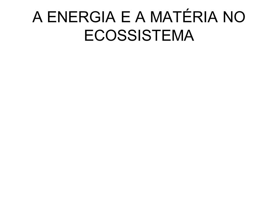 A ENERGIA E A MATÉRIA NO ECOSSISTEMA