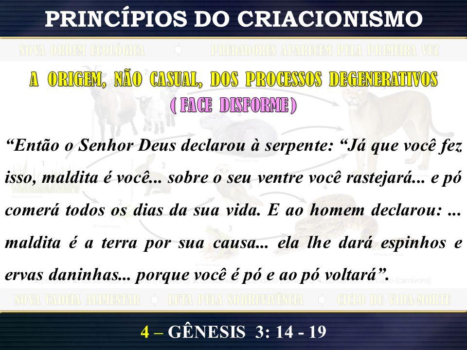 4 – GÊNESIS 3: 14 - 19 PRINCÍPIOS DO CRIACIONISMO