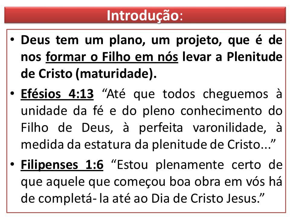 """Introdução: Deus tem um plano, um projeto, que é de nos formar o Filho em nós levar a Plenitude de Cristo (maturidade). Efésios 4:13 """"Até que todos ch"""