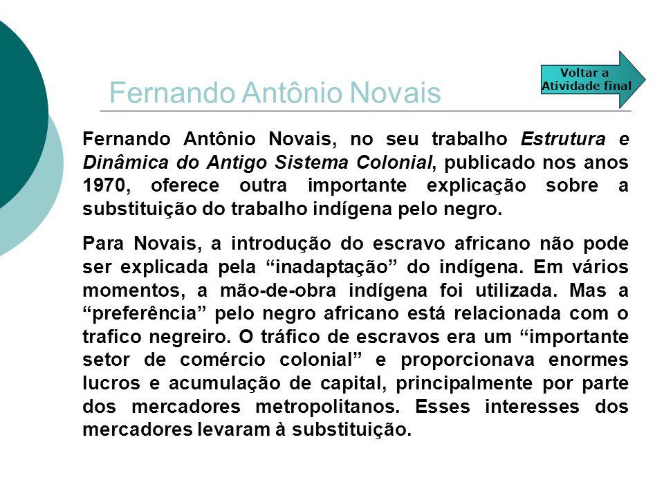 Fernando Antônio Novais Fernando Antônio Novais, no seu trabalho Estrutura e Dinâmica do Antigo Sistema Colonial, publicado nos anos 1970, oferece out