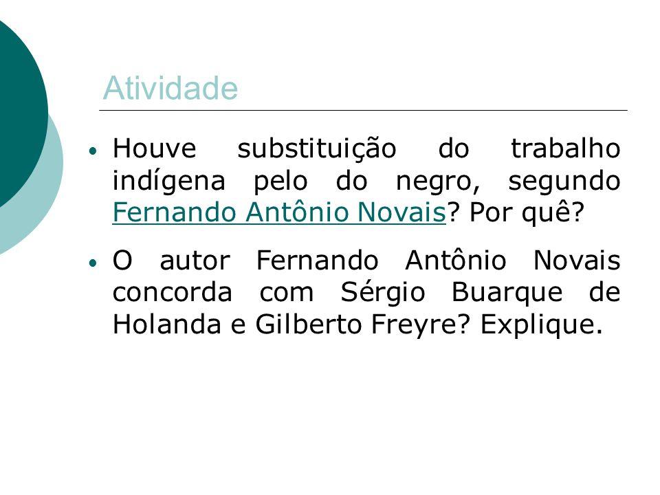 Atividade Houve substituição do trabalho indígena pelo do negro, segundo Fernando Antônio Novais? Por quê? Fernando Antônio Novais O autor Fernando An