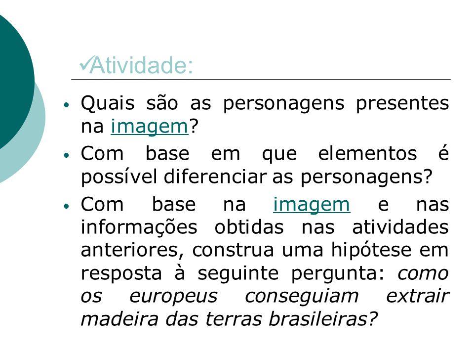 Vi a chegada dos portugueses em Pernambuco e Potiú.