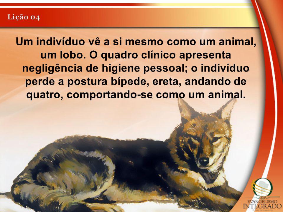 Um indivíduo vê a si mesmo como um animal, um lobo. O quadro clínico apresenta negligência de higiene pessoal; o indivíduo perde a postura bípede, ere