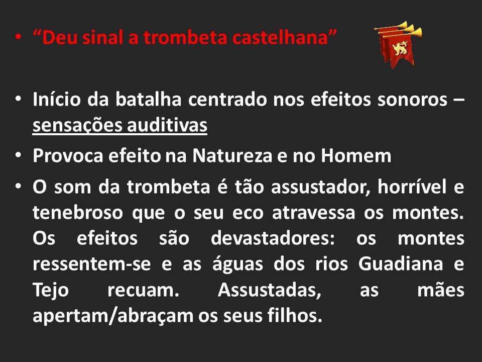 Fim da batalha (43 a 45) O Rei de Castela apercebe-se da derrota.