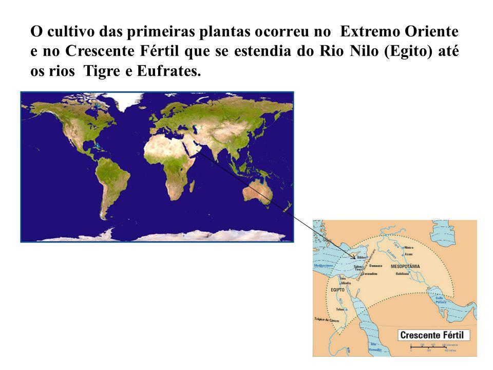 O cultivo das primeiras plantas ocorreu no Extremo Oriente e no Crescente Fértil que se estendia do Rio Nilo (Egito) até os rios Tigre e Eufrates.