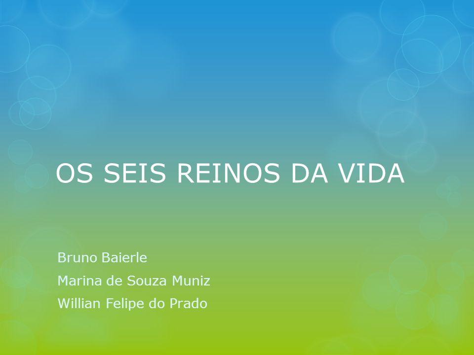 OS SEIS REINOS DA VIDA Bruno Baierle Marina de Souza Muniz Willian Felipe do Prado