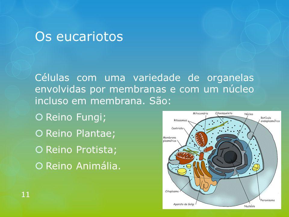 Os eucariotos Células com uma variedade de organelas envolvidas por membranas e com um núcleo incluso em membrana. São:  Reino Fungi;  Reino Plantae