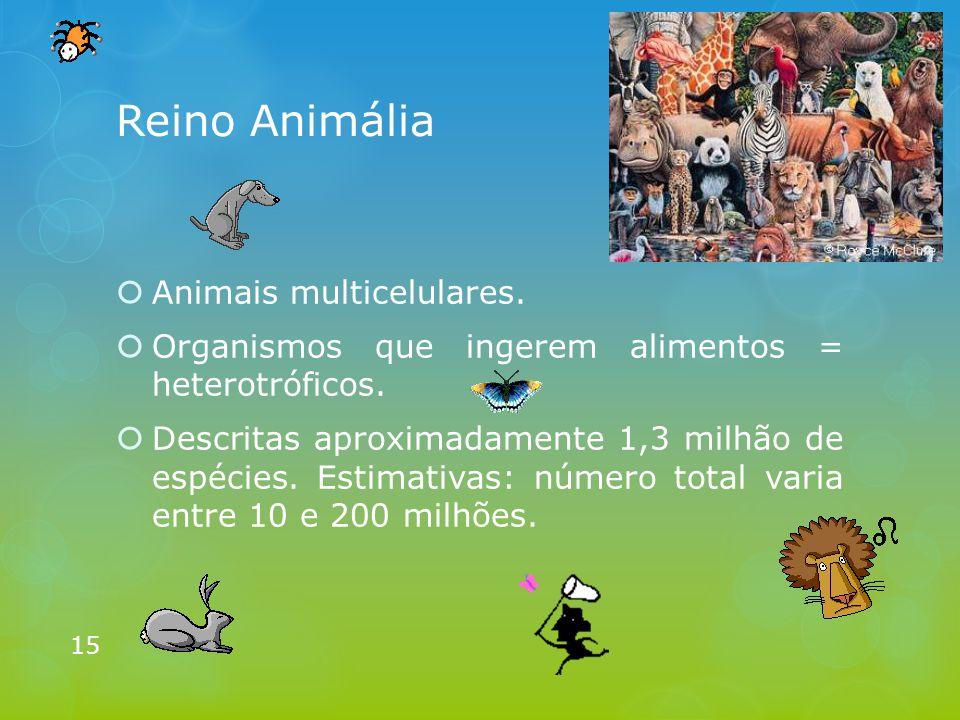 Reino Animália  Animais multicelulares.  Organismos que ingerem alimentos = heterotróficos.  Descritas aproximadamente 1,3 milhão de espécies. Esti